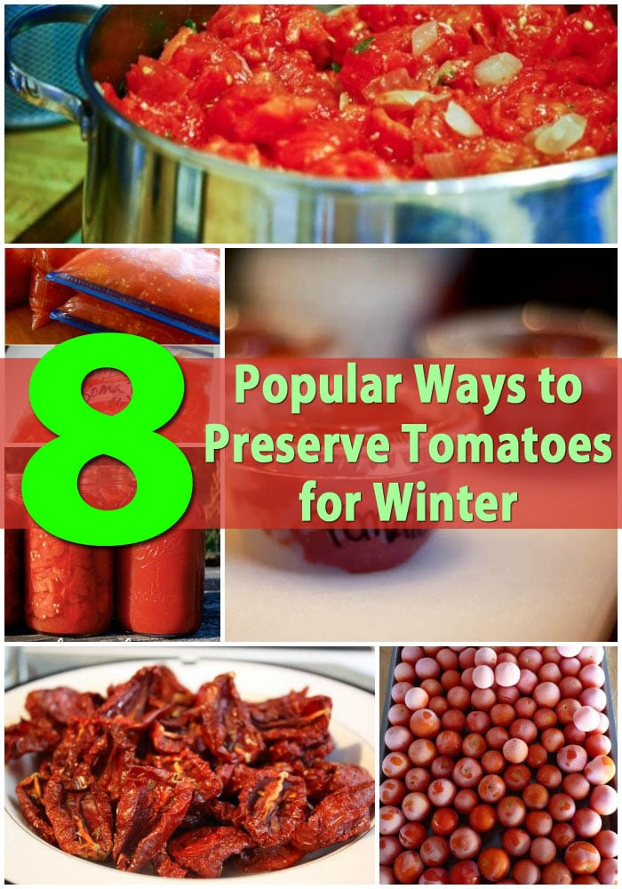 Top 8 Most Popular Ways to Preserve Tomatoes for Winter