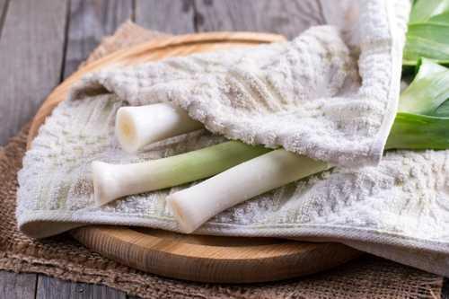 Лук порей заморозка – Можно ли заморозить лук порей и батун на зиму: как правильно замораживать – Шашлыкофф