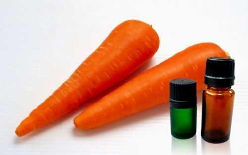 полезные свойства семян моркови